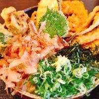 福岡東大地のうどん豊前裏打会の透明な麺とボリュームあるごぼう天が大好き!